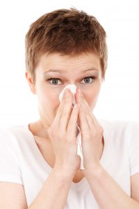 immune-allergy-cold-disease-flu-41284