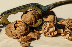 walnut-1751661_960_720